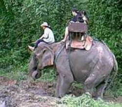 Thaïlande : Au nord d'Ayutthaya : Lopburi