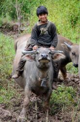 Thaïlande : province de Mae Hong Son